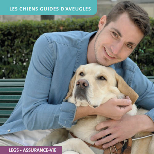 Senioragency-Silver-Marketing-chiens-guides-aveugles